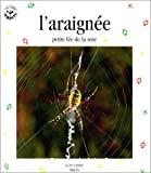 L'araignée petite fée de la soie
